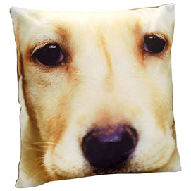 Dog Face Pillow - Yellow Lab