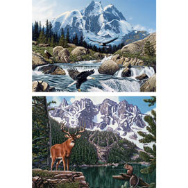 Set of 2: Hidden Image 300 Large Piece Jigsaw Puzzles