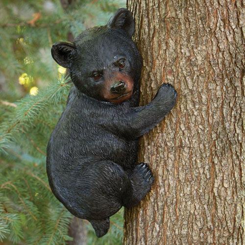 Bear Cub Up a Tree Animal Tree Hugger