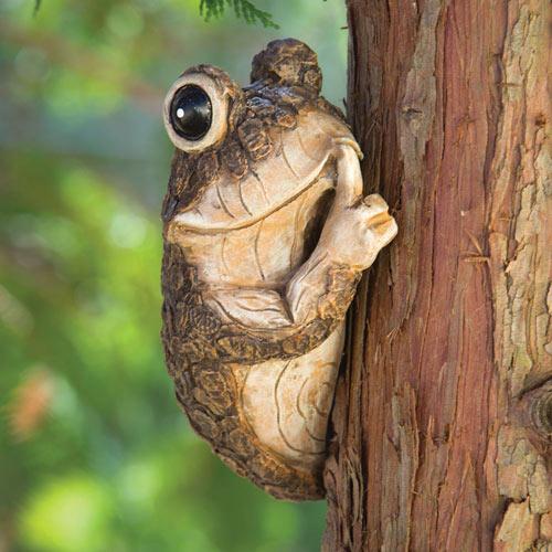 Keep Quiet Frog on a Tree Peeker