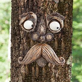 Old Man Tree Face Tree Hugger=