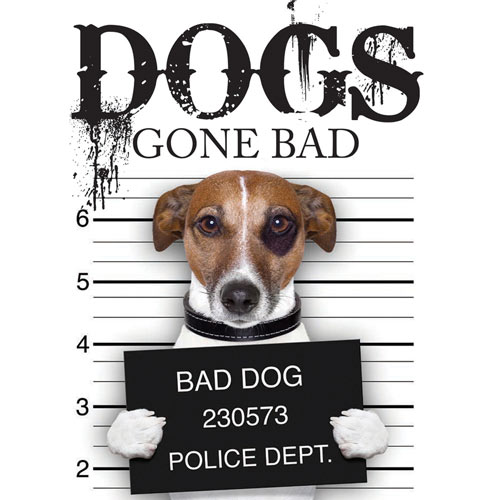 Dogs Gone Bad Book