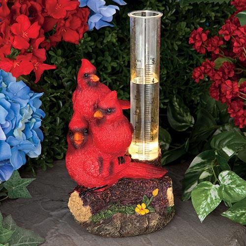 Cardinal Solar LED Rain Guage