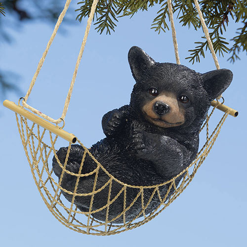Bear Cub Time Out