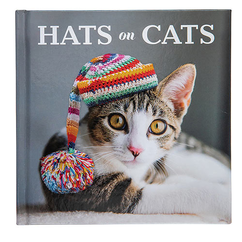 Hats On Cats