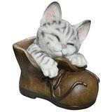 Contented Kitten