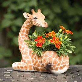 Safari Giraffe Planter