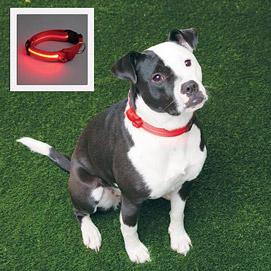 Adjustable LED Dog Collar - Red
