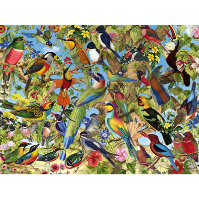 Fantastic Birds 500 Piece Jigsaw Puzzle