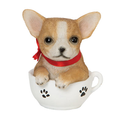 Chihuahua Teacup Puppy