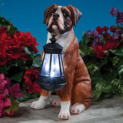 Dog Solar Lantern- Boxer