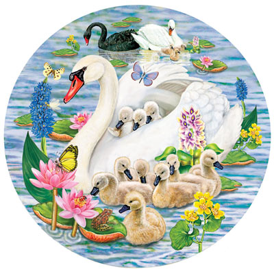 Swans And Cygnets 300 Large Piece Round Jigsaw Puzzle