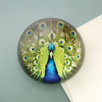 Peacock Paperweight