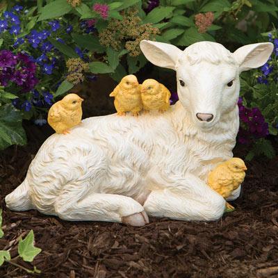 Baby Lamb And Chicks