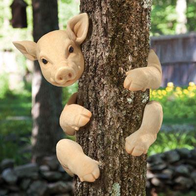 Polly The Pig Tree Hugger