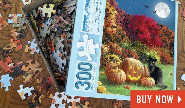 Midnight 300 Large Piece Jigsaw Puzzle