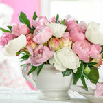 French Blend Peony Mixture