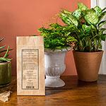 Houseplants Alive!® All-Natural Fertilizer 3lb