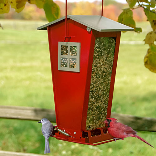 Squirrel-Proof Bird Feeder