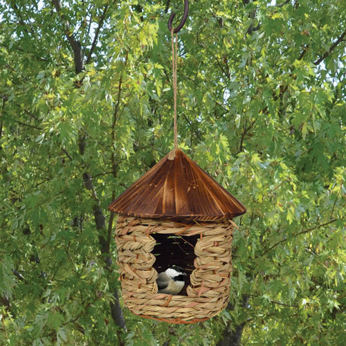 Hanging Grass Roosting Nest