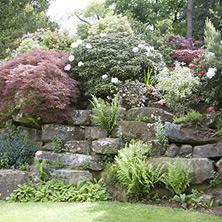 Perennial Beds & Rock Gardens