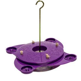 Purple Butterfly Feeder