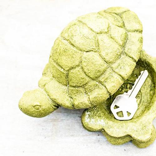 Turtle Hide-A-Key