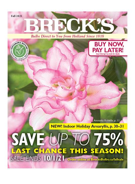 Brecks Canada Catalogue 2021