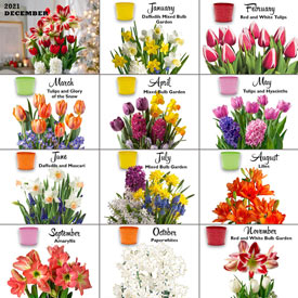Bulb Garden of the Month Club<sup>™</sup>