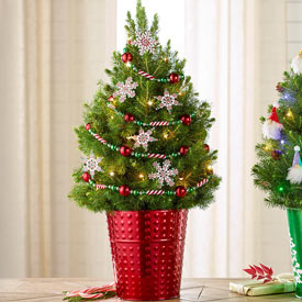 Peppermint Snowflakes Potted Spruce Tree