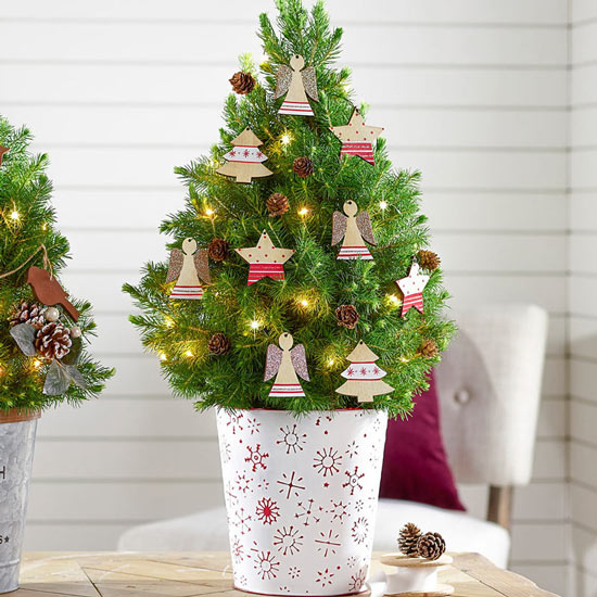 Festive Shapes Potted Spruce Tree