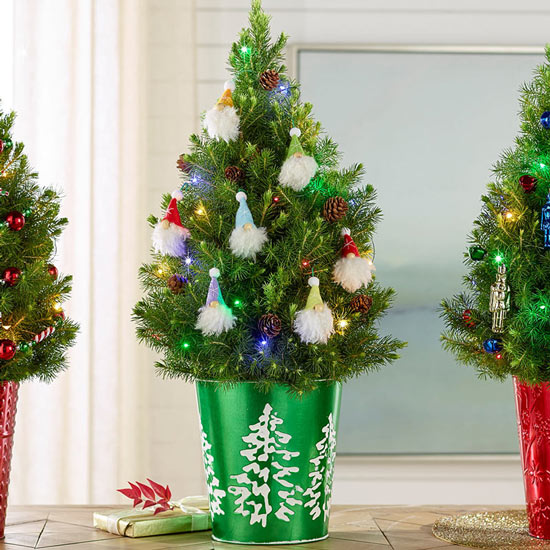 Spirited Gnomes Potted Spruce Tree