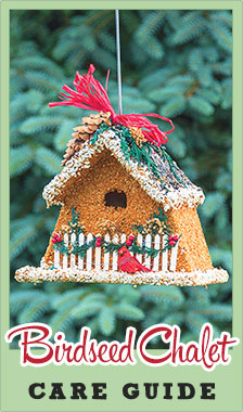Birdseed Chalet Care Guide