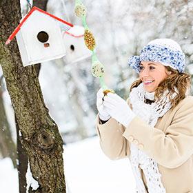 Backyard Birding Winter: It's for the birds
