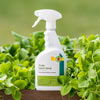 Pyolar Insect Spray
