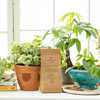 Houseplants Alive!rAll-Natural Fertilizer