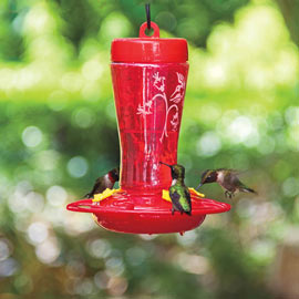 The Perfect Hummingbird Feeder