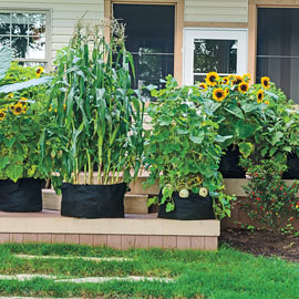 Grow Tubs<sup>®</sup> - Fabric Garden Containers