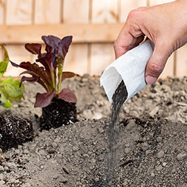 Fuhgeddaboudit! Mycorrhizae-Based Root Fertilizer