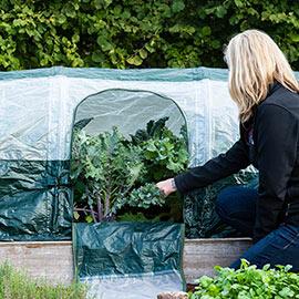 Superdome Premium Polytunnel Plant Cover
