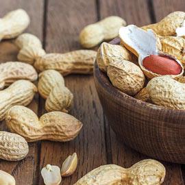 Bailey Virginia Peanut