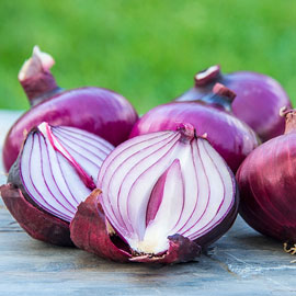 Red Candy Apple Onion