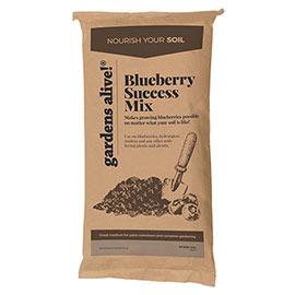 Blueberry Success Mix