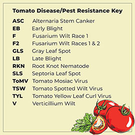 Easy Sauce<sup>™</sup> Hybrid Tomato