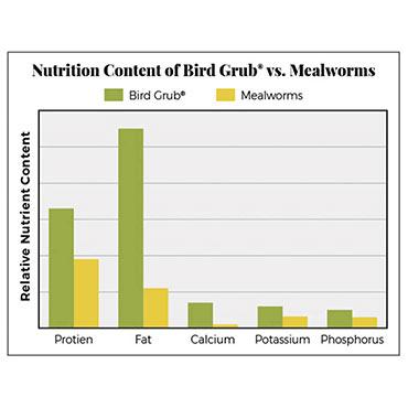 Bird Grub<sup>®</sup> Bird Food