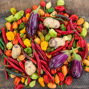 Garden Plenty<sup>™</sup> Plant-Based Fertilizer