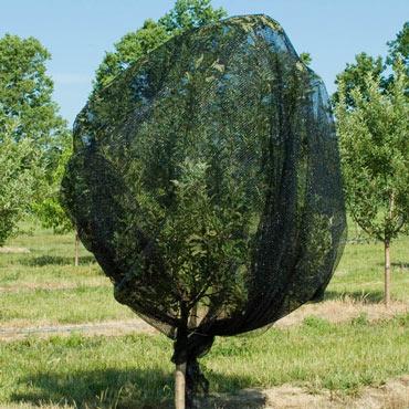 Premium Bird Netting - Plant Protection