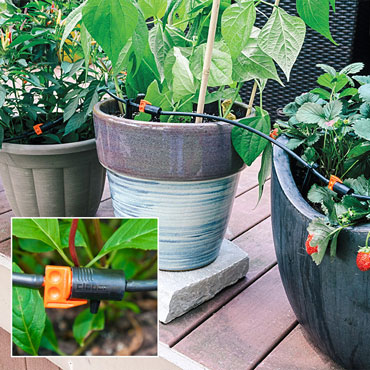 Drip Irrigation Kit for Container Plants