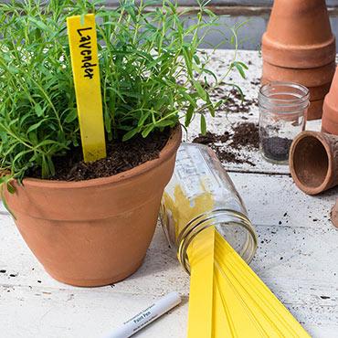 Premium Garden Label Stakes