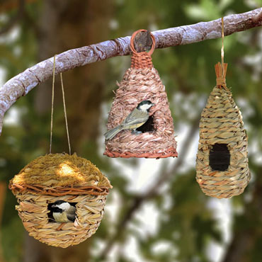Reed Grass Roost Pocket Trio